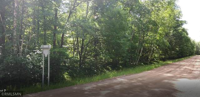 xxxx Ode Circle, Moran Twp, MN 56438 (#5731401) :: Twin Cities South