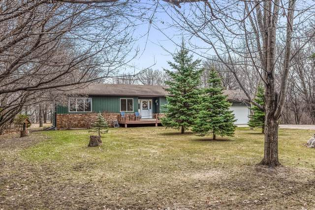 6083 125th Avenue, Clear Lake, MN 55319 (#5731523) :: Servion Realty