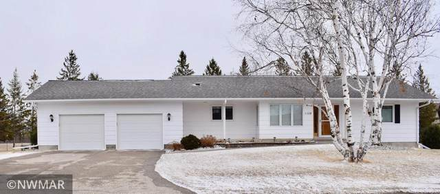 1108 Nordine Street S, Karlstad, MN 56732 (#5733759) :: Happy Clients Realty Advisors