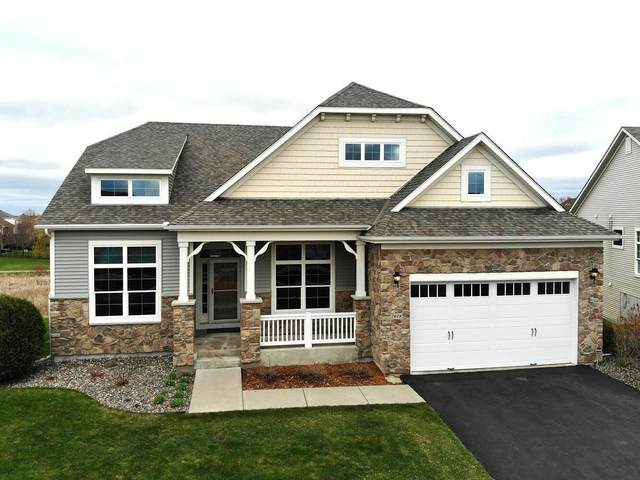 7678 Queensland Lane N, Maple Grove, MN 55311 (#5734850) :: Holz Group