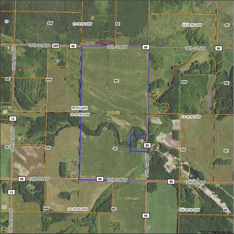 TBD County Road 96 - Baudette, McDougald Twp, MN 56623 (#5735356) :: Lakes Country Realty LLC