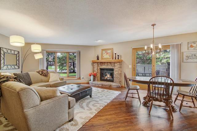 1009 Hill Court, Shoreview, MN 55126 (#5735509) :: Twin Cities Elite Real Estate Group   TheMLSonline