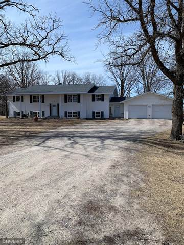 45625 280th Street, Roseau, MN 56751 (#5736299) :: Bos Realty Group