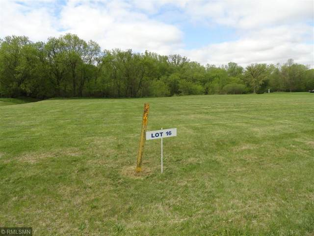 Lot 16 Nelson Drive, Elmwood, WI 54740 (#5737181) :: Twin Cities Elite Real Estate Group | TheMLSonline