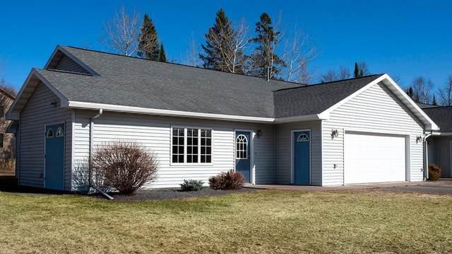 6 Michele Lane #1, Esko, MN 55733 (MLS #5738477) :: RE/MAX Signature Properties