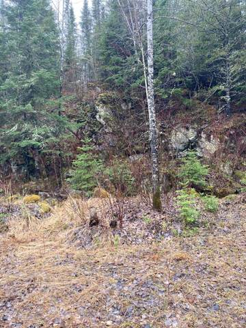 5419 Crane Lake Road, Orr, MN 55771 (#5739699) :: Lakes Country Realty LLC