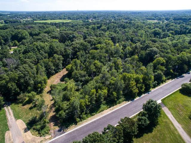 2876 168th Lane NW, Andover, MN 55304 (#5740159) :: Twin Cities Elite Real Estate Group   TheMLSonline