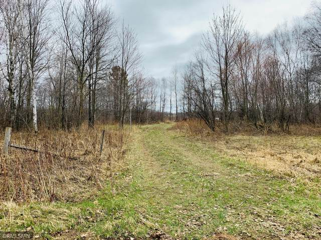 xxxx Blueberry Island Road, Pine City, MN 55063 (#5740942) :: Lakes Country Realty LLC