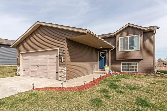 3907 Orchardview Lane NW, Rochester, MN 55901 (#5741771) :: Holz Group