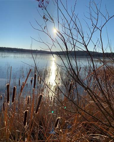 Parcel F County Road 30, Crosby, MN 56441 (#5753206) :: Tony Farah | Coldwell Banker Realty