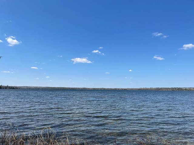 TBD Steamboat Lake Road NW, Cass Lake, MN 56633 (#5753401) :: The Jacob Olson Team