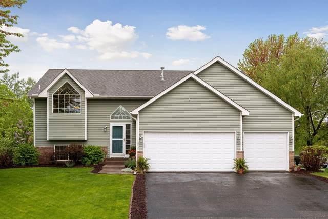 13935 Hill Place Drive, Rogers, MN 55374 (#5754992) :: Carol Nelson | Edina Realty