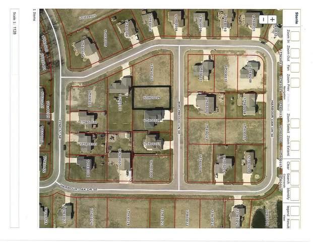 615 Birchwood Lane SE, Owatonna, MN 55060 (#5756331) :: Lakes Country Realty LLC