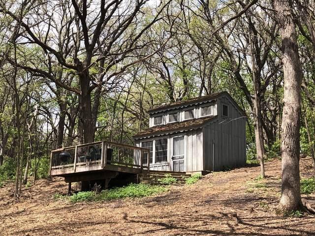 8107 Whiskey Lake Drive NW, Brandon, MN 56315 (#5756332) :: Servion Realty