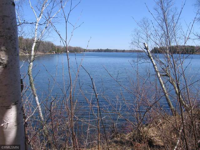 XXX Northern Hawk Drive NW, Woodrow Twp, MN 56655 (#5757155) :: Bos Realty Group