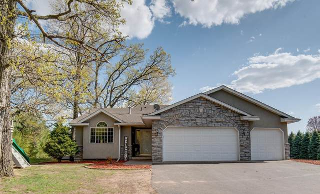 6705 401st Street, North Branch, MN 55056 (#5757397) :: Bos Realty Group