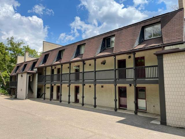 380 Ramsey Street 5B, Saint Paul, MN 55102 (#5758499) :: Holz Group