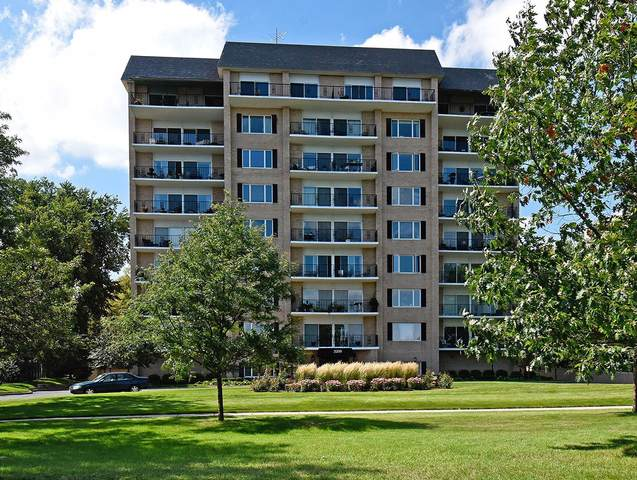 3200 W Bde Maka Ska Parkway #202, Minneapolis, MN 55416 (#5758757) :: The Preferred Home Team