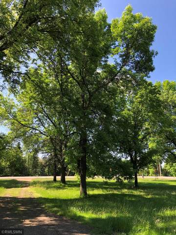 1160 N Willow Drive, Orono, MN 55356 (#5762401) :: Bre Berry & Company
