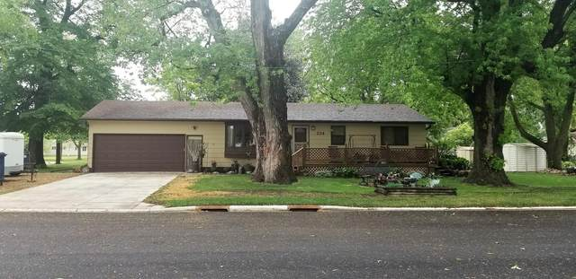 134 5th Street NW, Winnebago, MN 56098 (#5766238) :: Tony Farah | Coldwell Banker Realty