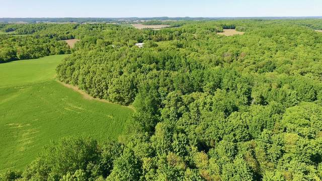 0 230th Avenue, Eau Galle Twp, WI 54737 (#5769791) :: Bos Realty Group