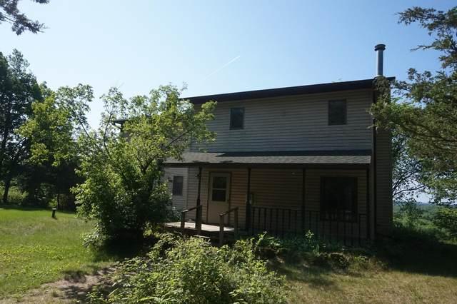 N1293 566th Street, Menomonie, WI 54751 (#6005254) :: Twin Cities Elite Real Estate Group   TheMLSonline