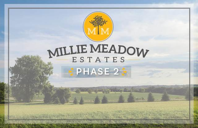 xxxx L25B1 Millie Meadow Drive SW, Rochester, MN 55902 (#6007106) :: Twin Cities South