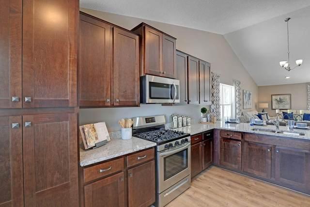 13913 Avenue N, Dayton, MN 55327 (#6007943) :: Tony Farah | Coldwell Banker Realty