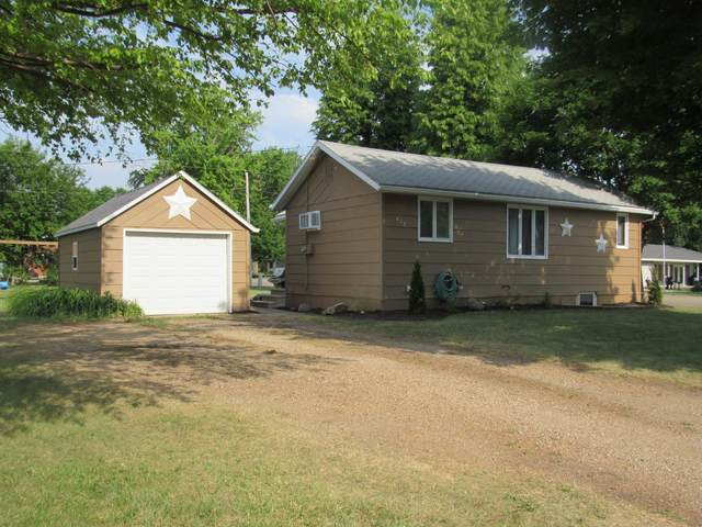 413 N Baltimore Avenue, Fulda, MN 56131 (#6010043) :: Lakes Country Realty LLC