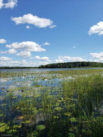 Lot 004 NE Mek I Nok Court, Turtle River Twp, MN 56601 (#6011420) :: Lakes Country Realty LLC