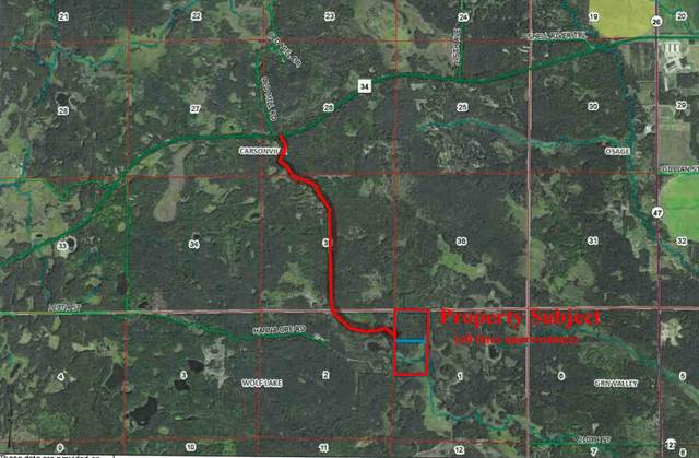 xxx Navillus Forest Land, Wolf Lake Twp, MN 56593 (#6025970) :: Lakes Country Realty LLC
