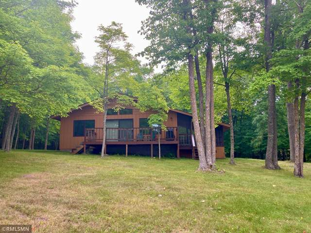 4593 28th Avenue NW, Hackensack, MN 56452 (#6030357) :: The Michael Kaslow Team