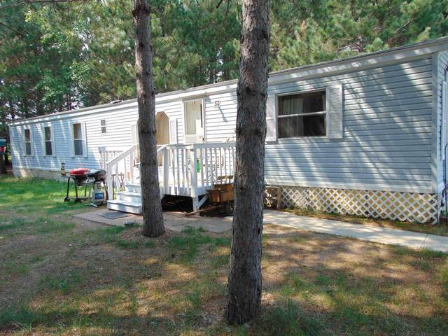 16200 County 81, Park Rapids, MN 56470 (#6046826) :: Lakes Country Realty LLC