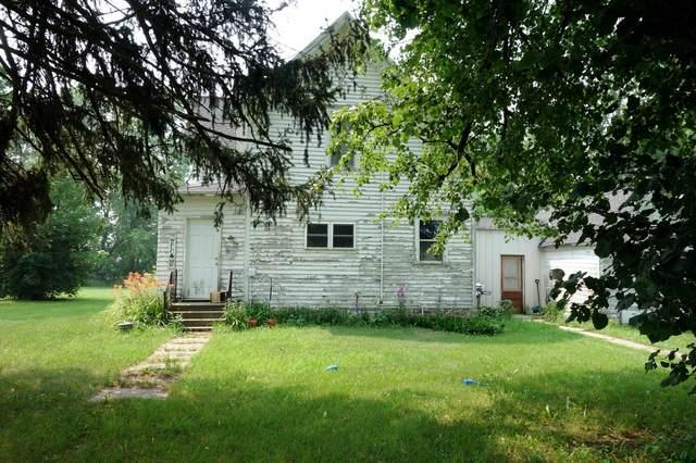 53184 335th Street, Blooming Prairie, MN 55917 (#6072504) :: Bos Realty Group