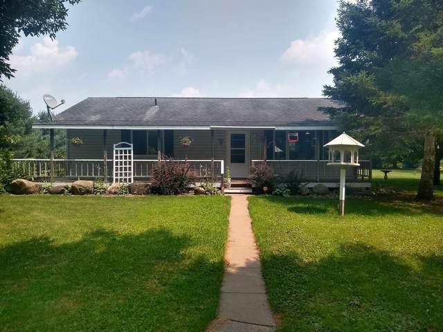1530 Goose Lake Lane, Balsam Lake, WI 54810 (#6074152) :: The Preferred Home Team
