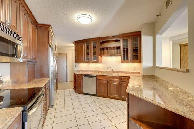 121 Washington Avenue S #717, Minneapolis, MN 55401 (#6076097) :: The Pietig Properties Group