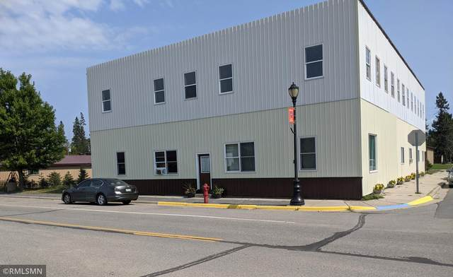 300 Main Street, Littlefork, MN 56653 (#6083591) :: The Pietig Properties Group
