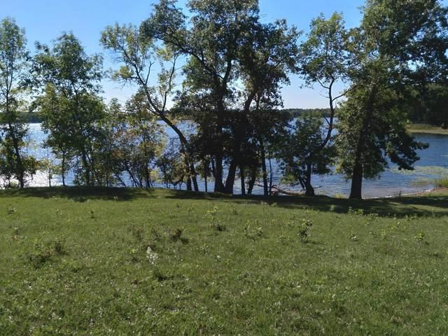Tract D County Road 10, Deerwood, MN 56444 (#6090747) :: The Pietig Properties Group