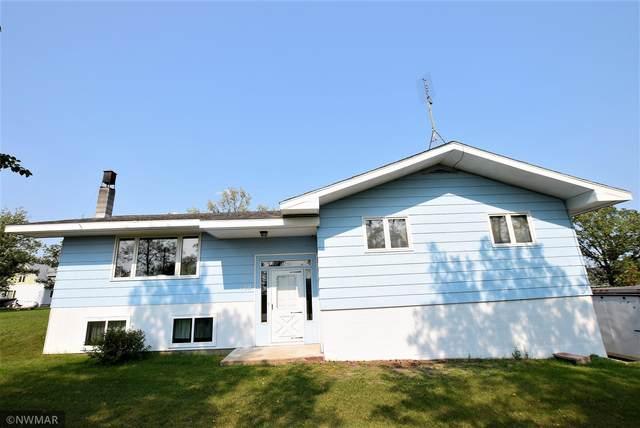 109 E Stokes Avenue, Badger, MN 56714 (#6093798) :: Carol Nelson | Edina Realty