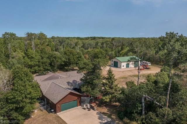 31359 Wildwood Lane, Breezy Point, MN 56472 (#6095042) :: The Pietig Properties Group