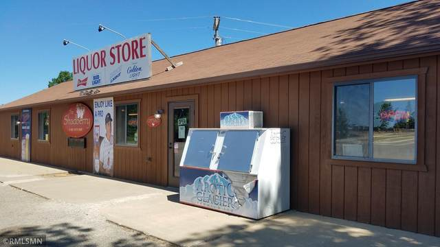 436 State Hwy 6, Crooked Lake Twp, MN 56662 (#6095988) :: Happy Clients Realty Advisors