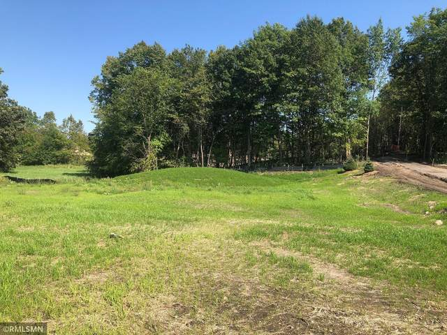 1882 Campfire Drive W, Waconia, MN 55387 (#6096212) :: Holz Group
