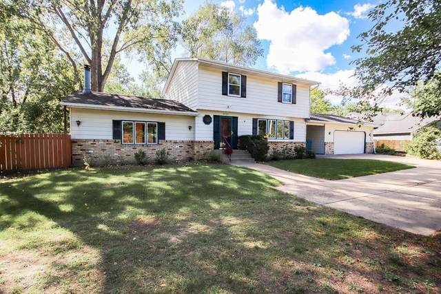 4735 Hodgson Road, Shoreview, MN 55126 (#6096411) :: The Janetkhan Group
