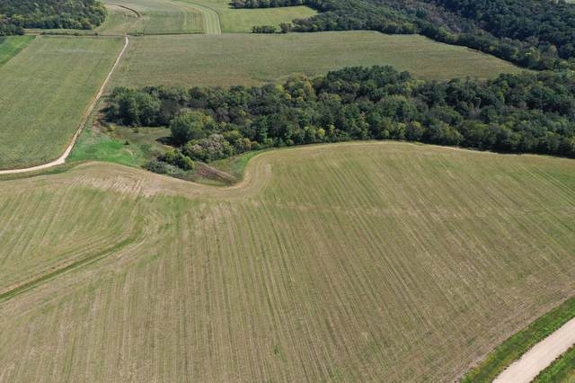 Lot 20 1100th Street, River Falls, WI 54022 (#6097735) :: Twin Cities South