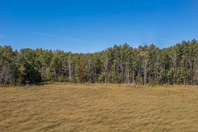 TBD Tract A Little Pine Road, Sylvan Twp, MN 56401 (#6101356) :: Happy Clients Realty Advisors