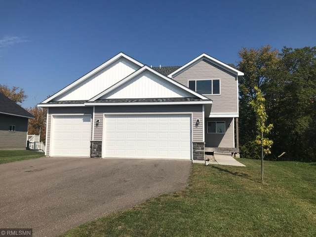 29407 Wildwood Road, Chisago City, MN 55013 (#6101995) :: Servion Realty