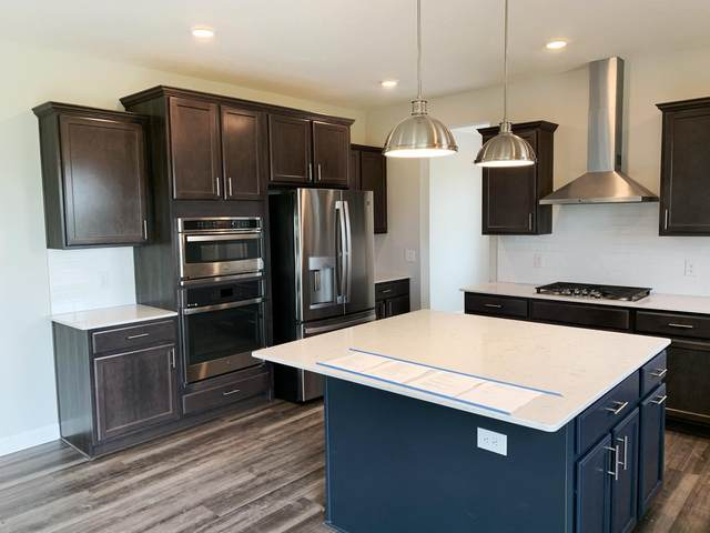 11170 Meadow View Lane, Rogers, MN 55311 (#6105211) :: Holz Group