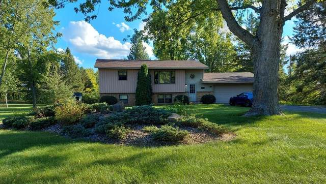 13419 311th Avenue, Princeton, MN 55371 (#6106545) :: The Twin Cities Team