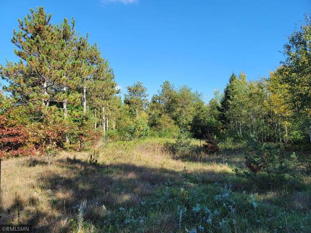 xxx Marget Lake Rd Nw, Isanti, MN 55040 (#6110220) :: Twin Cities Elite Real Estate Group | TheMLSonline