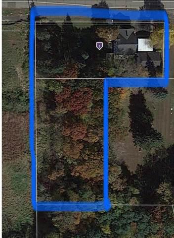 510 Birch Street, Lino Lakes, MN 55014 (#6113422) :: Carol Nelson | Edina Realty
